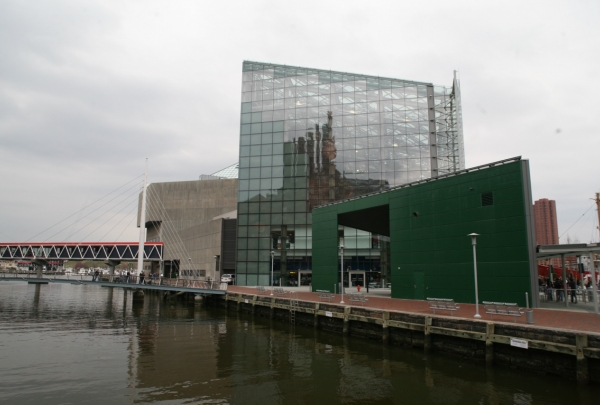 National Aquarium in Baltimore - find