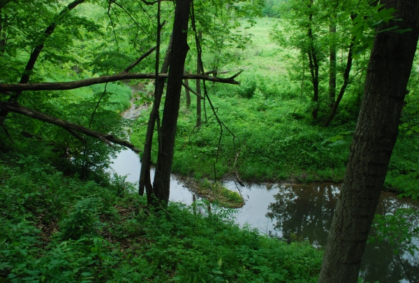 Teaneck Creek Conservancy - find